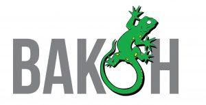vakon-logo