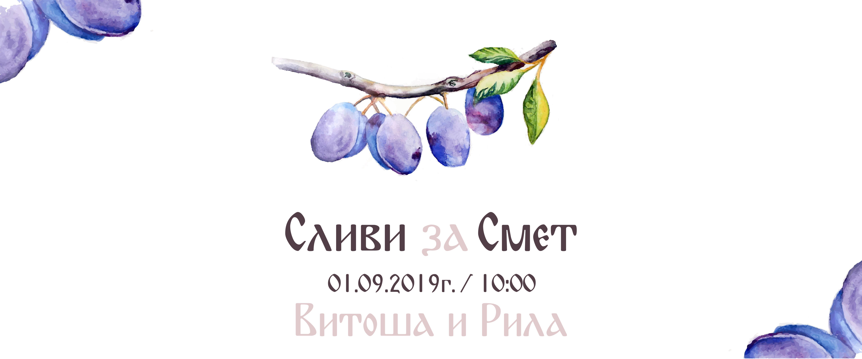 slivi-2019