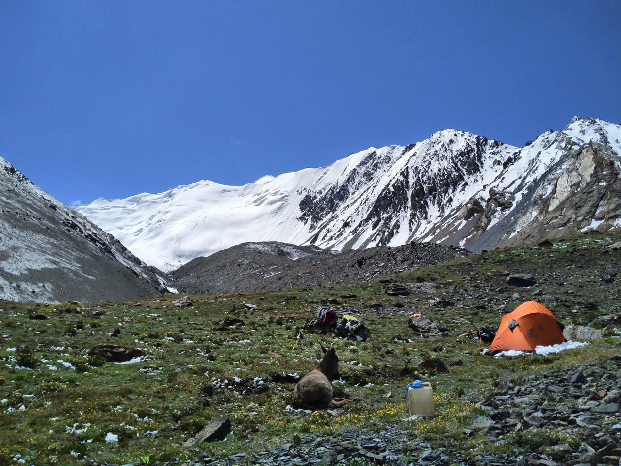 Базов лагер за връх Кохи Бробър - 4700 м.